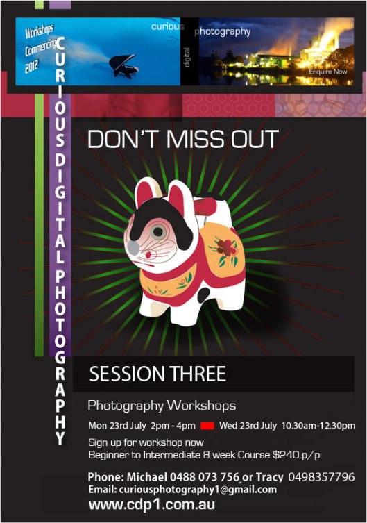 CDP Session Three workshops